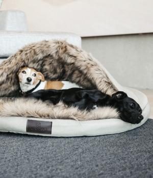 Kentucky Dogwear Hundebett Igloo FauxFur Premium