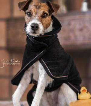 Kentucky Dogwear Hundedecke Towel 100% Microfiber