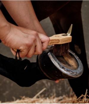 Grooming Deluxe Hufkratzer Hoof Pick Brush Premium