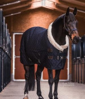 Kentucky Horsewear Stalldecke Turnierdecke gesteppt