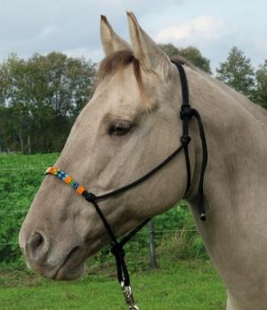 Wildhorn Knotenhalfter Beads mit Perlen