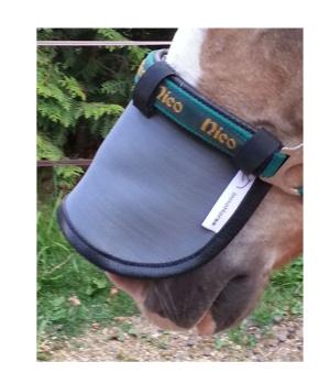 Inno Horse Nose Screen Sonnen-Nasenschutz