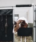 Kentucky Horsewear Kopfschutz Türschutz Pferd - schwarz
