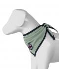 Spooks Dog Bandana Halstuch FS´21 - dustygreen