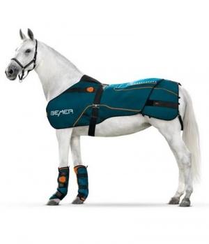 BEMER Bemer Horse Set Testset zum Mieten