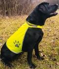 Textil Hunde Safety Vest Signal - neongelb