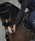 Kentucky Horsewear Nasenriemen Abdeckung Lammfell - schwarz