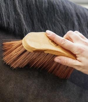 Kentucky Horsewear Bürste Middle Brush Medium