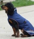 Bucas Hundedecke Therapy Dog Rug - navyorange