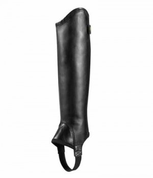 Ariat Beinchaps Concord 17