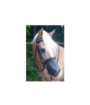 Inno Horse Nose Cover (300-10.08)