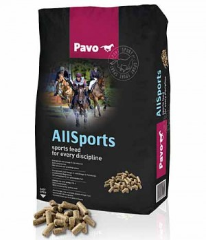 Pavo Pavo All-Sports