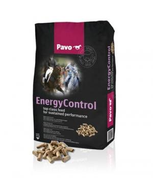 Pavo Pavo Energy-Control